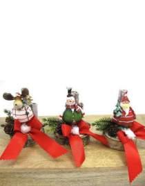 Weihnachtswinterlinge rot auf Holzscheibe zur Wahl